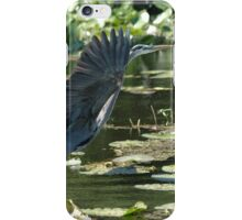 Great blue heron taking flight iPhone Case/Skin