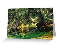 On Allerton Pond Greeting Card