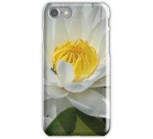 lily pad flower iPhone Case/Skin