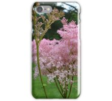 Queen of The Prarie iPhone Case/Skin