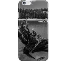 Lower Blue Lake - High Sierra  iPhone Case/Skin