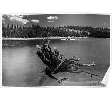 Lower Blue Lake - High Sierra  Poster