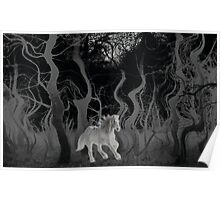 Wild Horse in the Forest Poster
