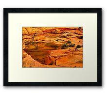 Arizona Desert Oasis Framed Print