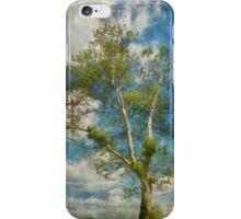White Birch In May iPhone Case/Skin