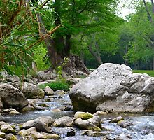 River Boulder by LyKi