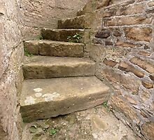 Steps in the wall by kalaryder