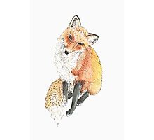 Fox Prince Watercolor Photographic Print