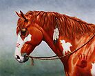 Native American War Horse by csforest