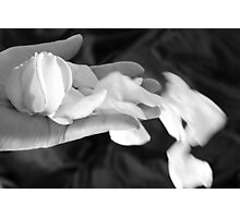 When I Dream Photographic Print