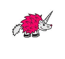 einhorn pferd pink lustig mädchen stacheln baby comic cartoon süßer kleiner niedlicher igel  Photographic Print