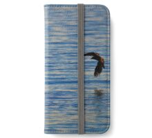 Corvus Brachyrhynchos - American Crow Landing On A Rock Covered With Algae | East Marion, New York iPhone Wallet/Case/Skin
