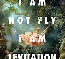 I AM NOT FLY, I AM LEVITATION by patrimonic
