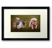 Excuse me Suzette, didn't you wear the same ensemble yesterday? Framed Print