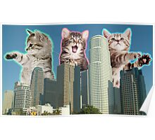 Downtown Cats Poster