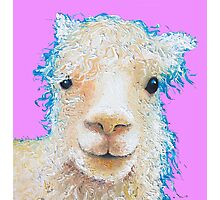Alpaca painting on violet background Photographic Print