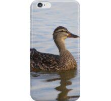 Female Duck  iPhone Case/Skin