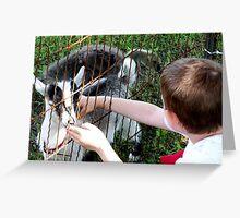 Petting Zoo Greeting Card