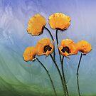 Poppy Flowers! by LudaNayvelt