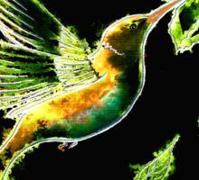 Reflections of Green -Hummingbird Sticker