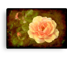 How Can You Mend a Broken Heart? Canvas Print
