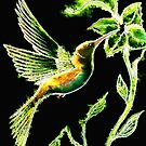 Reflections of Green - Hummingbird by Linda Callaghan