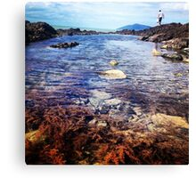 Rock pools, of Central Queensland  Canvas Print