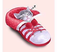 Cat in the shoe Photographic Print