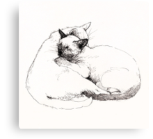 Chinky and Chang : ink drawing Canvas Print