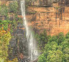 Fitzroy Falls .. the long view by Michael Matthews