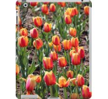 Stand Outs And Stand Ups iPad Case/Skin