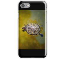 Baby turtle iPhone Case/Skin