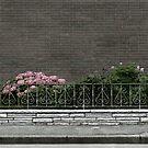 square no. 0055 (Vorgarten) by doubleblind