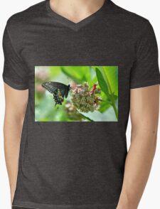 Eastern Black Swallowtail.... Mens V-Neck T-Shirt
