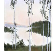Digitally Drawn Birch Tree Landscape Photographic Print