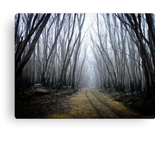 Wounded Woodland  Canvas Print