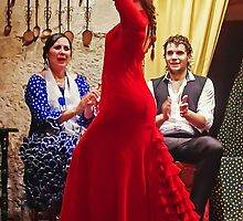 The Art of Flamenco by TonyCrehan