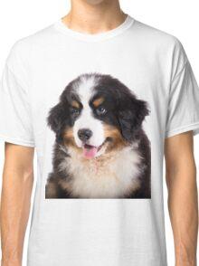 Portrait of Bernese mountain dog puppy Classic T-Shirt