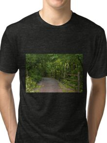 Perpetual Peace Tri-blend T-Shirt