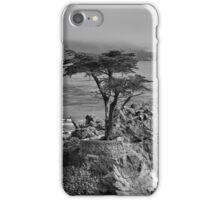 Lone Cypress Tree #2 iPhone Case/Skin
