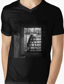 A Horse in the Stable Doorway Mens V-Neck T-Shirt