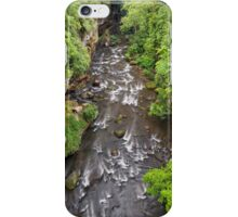 Gorge at Cuyahoga Falls iPhone Case/Skin