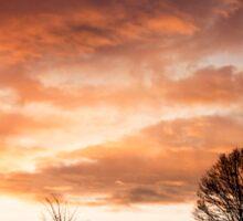 Sunset Silhouettes Sticker