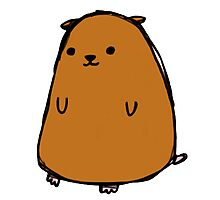 Poorly drawn hamster Photographic Print