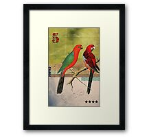 Animal Collection by Elo -- Birds Framed Print