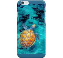 tortue iPhone Case/Skin