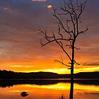Narrabeen lake sunset portrait by Doug Cliff