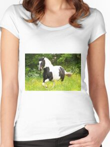 Piebald Mare Women's Fitted Scoop T-Shirt