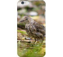 Rock Pipit behind grass iPhone Case/Skin