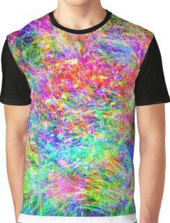 Rainbow Meadow Graphic T-Shirt